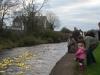 Charity Duck Race Clarinbridge
